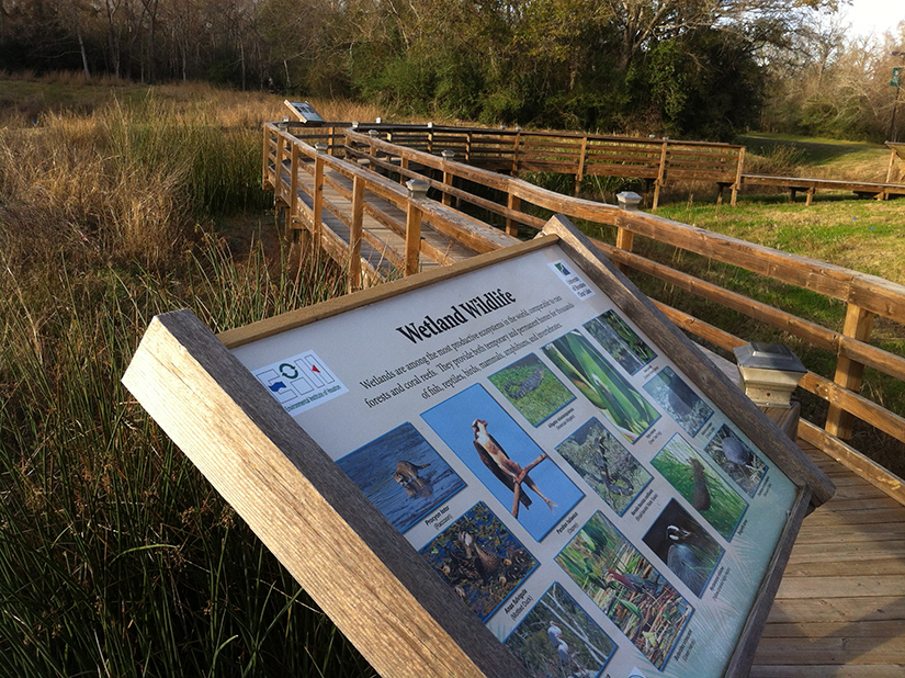 Interpretive signage within the wetland complex